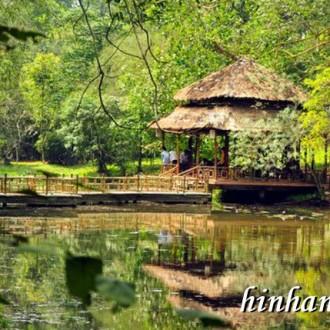 Phong cảnh hữu tình của ảnh nền thiên nhiên