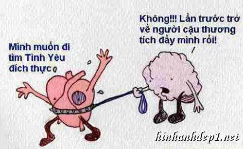 Những hình ảnh hài hước về tình yêu