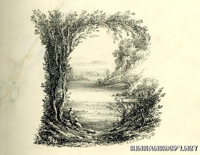 Ảnh nền bảng chữ cái đẹp được tạo từ thiên nhiên (1)