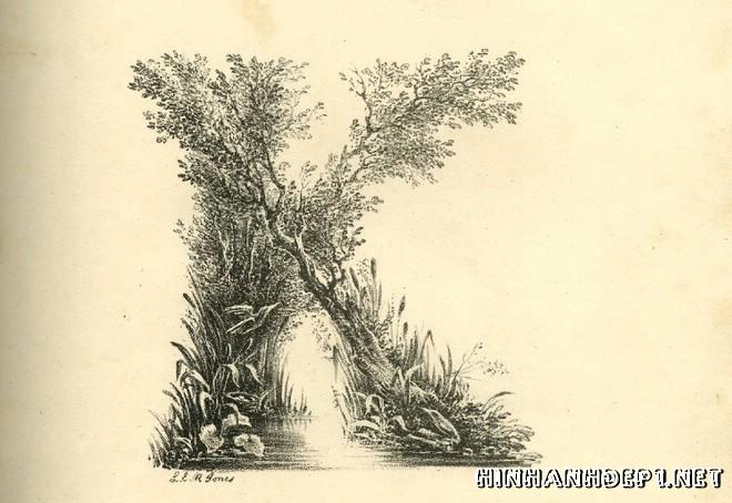 Ảnh nền bảng chữ cái đẹp được tạo từ thiên nhiên (10)