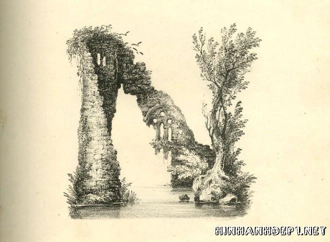 Ảnh nền bảng chữ cái đẹp được tạo từ thiên nhiên (13)
