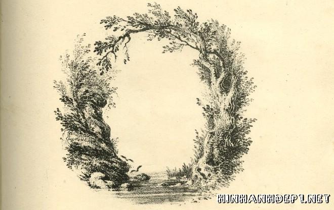 Ảnh nền bảng chữ cái đẹp được tạo từ thiên nhiên (14)