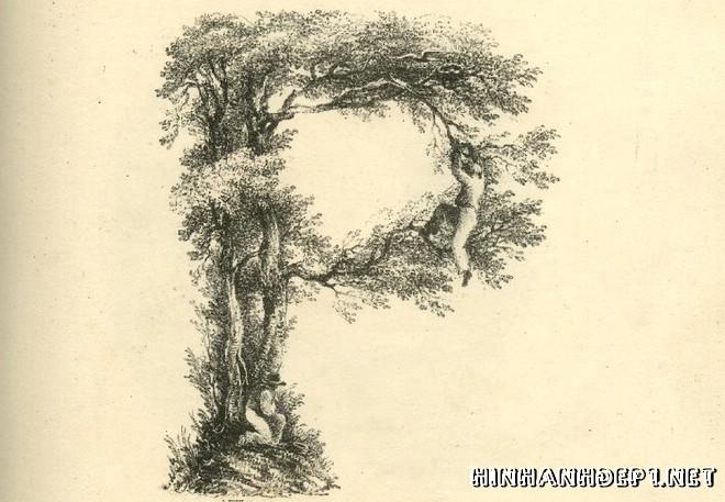 Ảnh nền bảng chữ cái đẹp được tạo từ thiên nhiên (15)