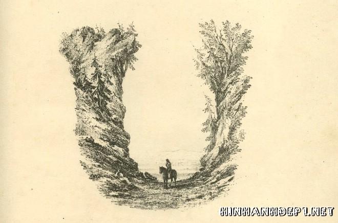 Ảnh nền bảng chữ cái đẹp được tạo từ thiên nhiên (20)