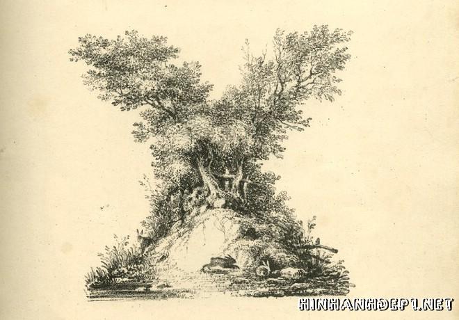 Ảnh nền bảng chữ cái đẹp được tạo từ thiên nhiên (23)