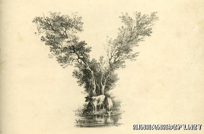 Ảnh nền bảng chữ cái đẹp được tạo từ thiên nhiên (24)