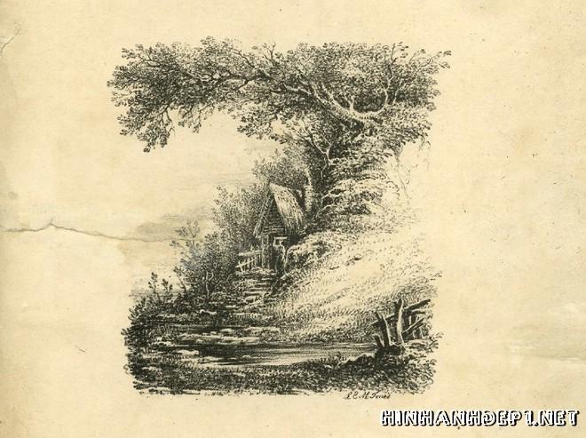 Ảnh nền bảng chữ cái đẹp được tạo từ thiên nhiên (25)
