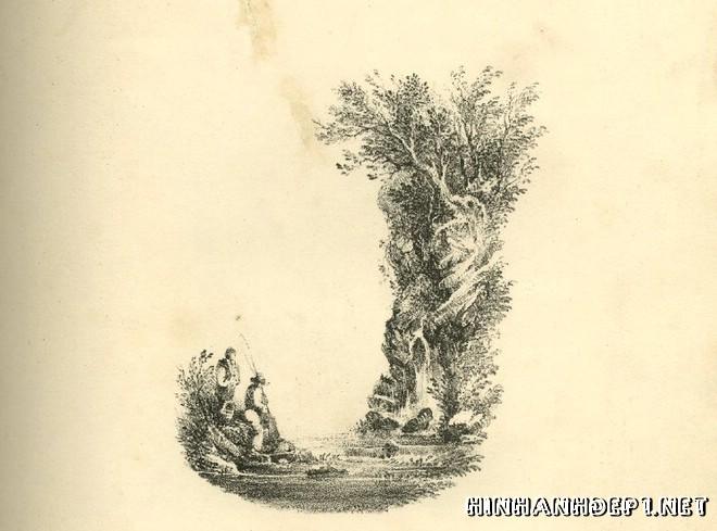Ảnh nền bảng chữ cái đẹp được tạo từ thiên nhiên (9)