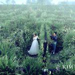 Bộ ảnh cưới của Nhật Kim Anh đẹp như mơ