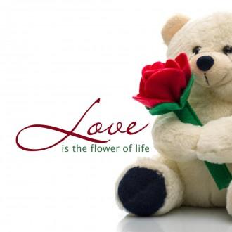 Bộ hình nền về tình yêu đẹp và đầy lãng mạn