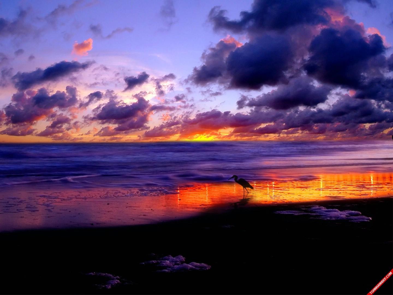 Những bức ảnh về thiên nhiên đẹp say lòng người