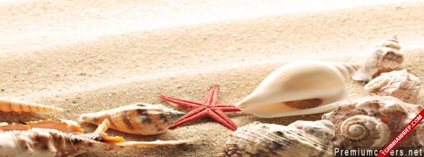 Ảnh bìa cho facebook đẹp nhất về biển