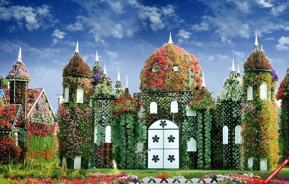 chiem-nguong-ve-dep-tuyet-voi-cua-vuon-hoa-miracle-garden-dubai (5)