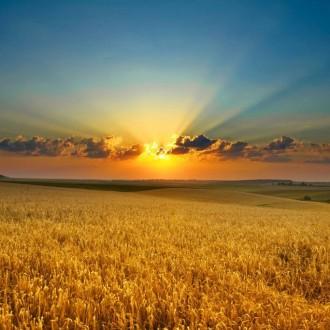 Khó tin trước vẻ đẹp bầu trời ở nhiều góc cạnh