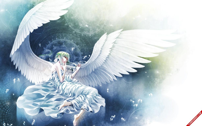 Lặng nhìn bộ ảnh thiên thần siêu đáng yêu