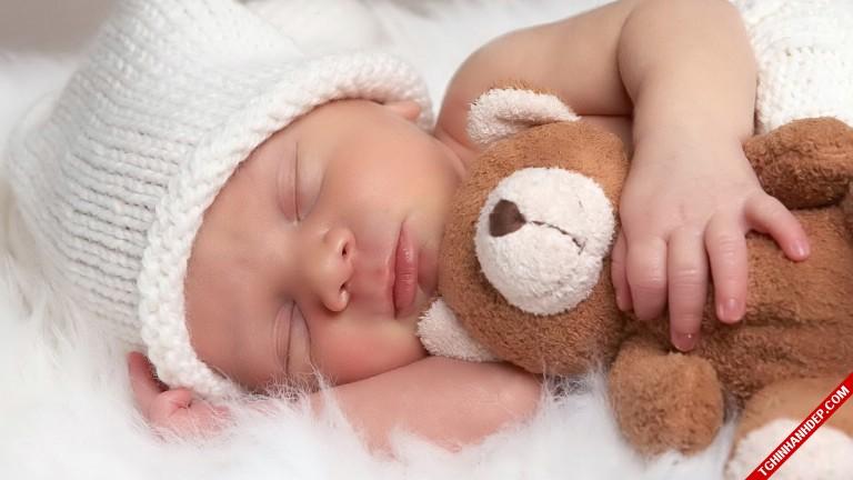 Bộ ảnh siêu kute của các em bé khi ngủ