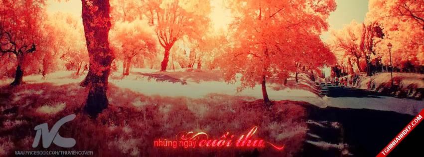 Loạt ảnh bìa về mùa thu đẹp lãng mạn nhất