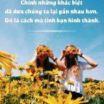 Hình ảnh đẹp: những câu nói hay nhất về tình bạn