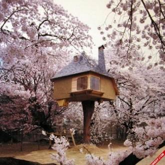 Bộ ảnh những ngôi nhà độc đáo và siêu đáng yêu