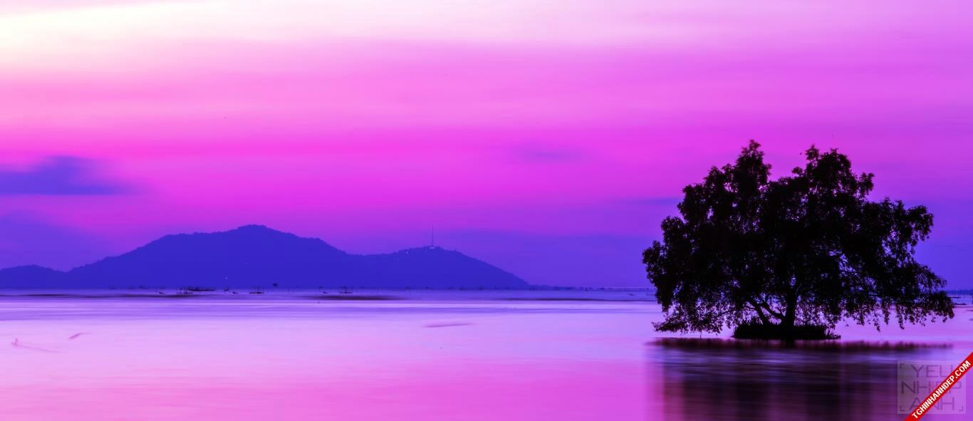 hình ảnh phong cảnh thiên nhiên hoàng hôn tím
