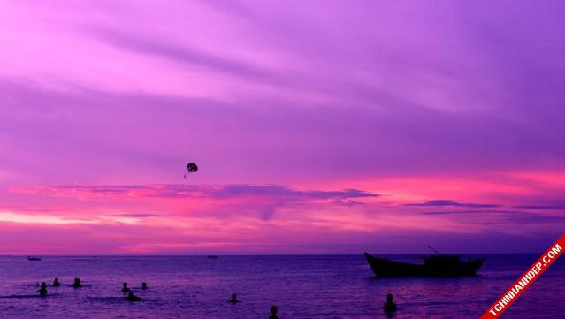 Hình ảnh đẹp của thiên nhiên vào bình minh trên bãi biển