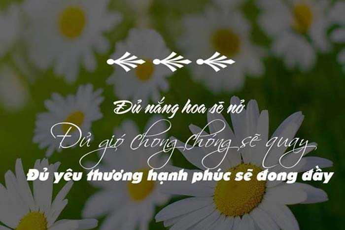 1001+-nhung-stt-hay-cuc-chat-dang-facebook (1)